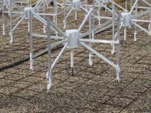 Close-up of MWA antenna and ground grid